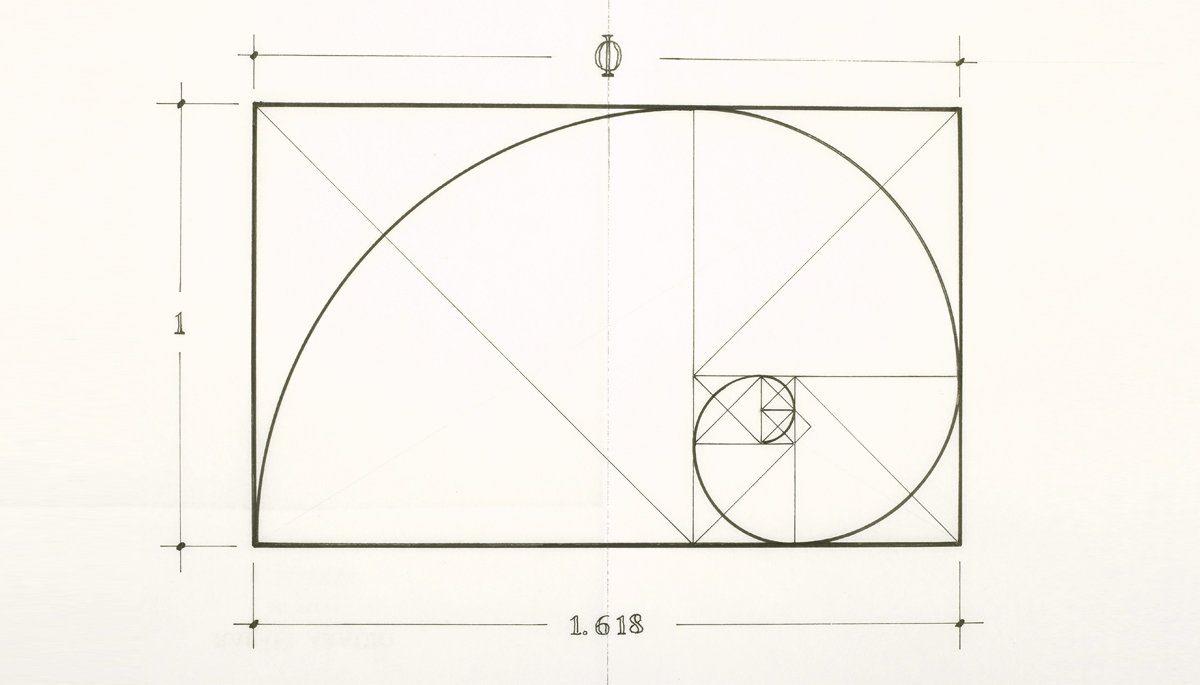 artichoke designs golden ratio